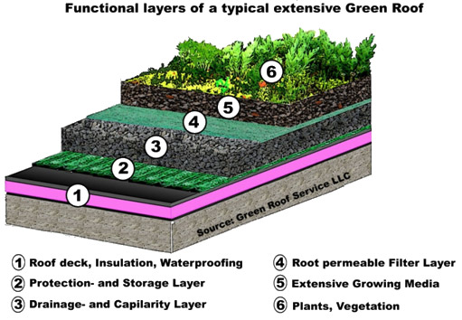 Green Roofs Suds Wales Sustainable Drainage Systems